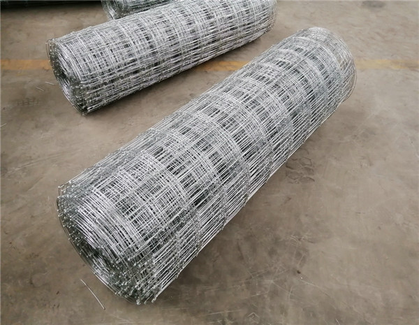 1.9m Height Galvanized 30cm Vertical Wire Distance 150m long fixed knot fence